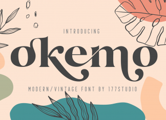 Okemo – Modern Serif Font