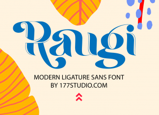 Raugi – Ligature Sans Serif Font